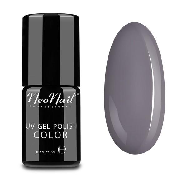 Gel Polish - 6 ml - Silver Grey